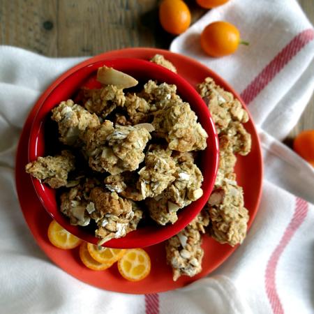 Orange Almond Cookie Granola