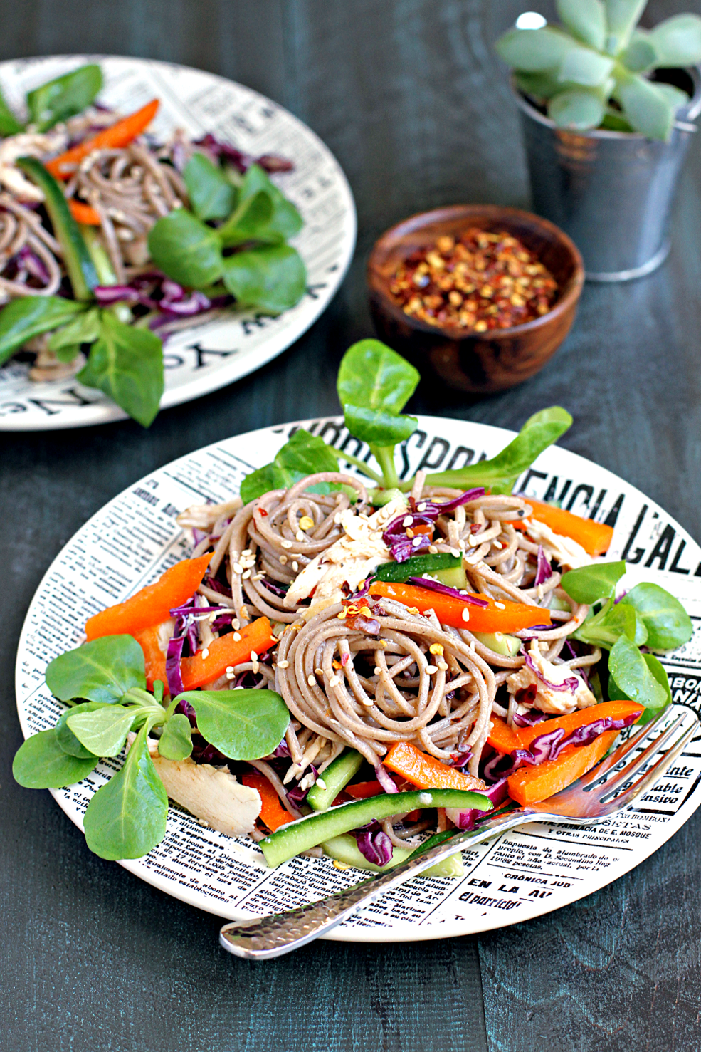 Soba Noodle Salad with Chicken and Vegetables