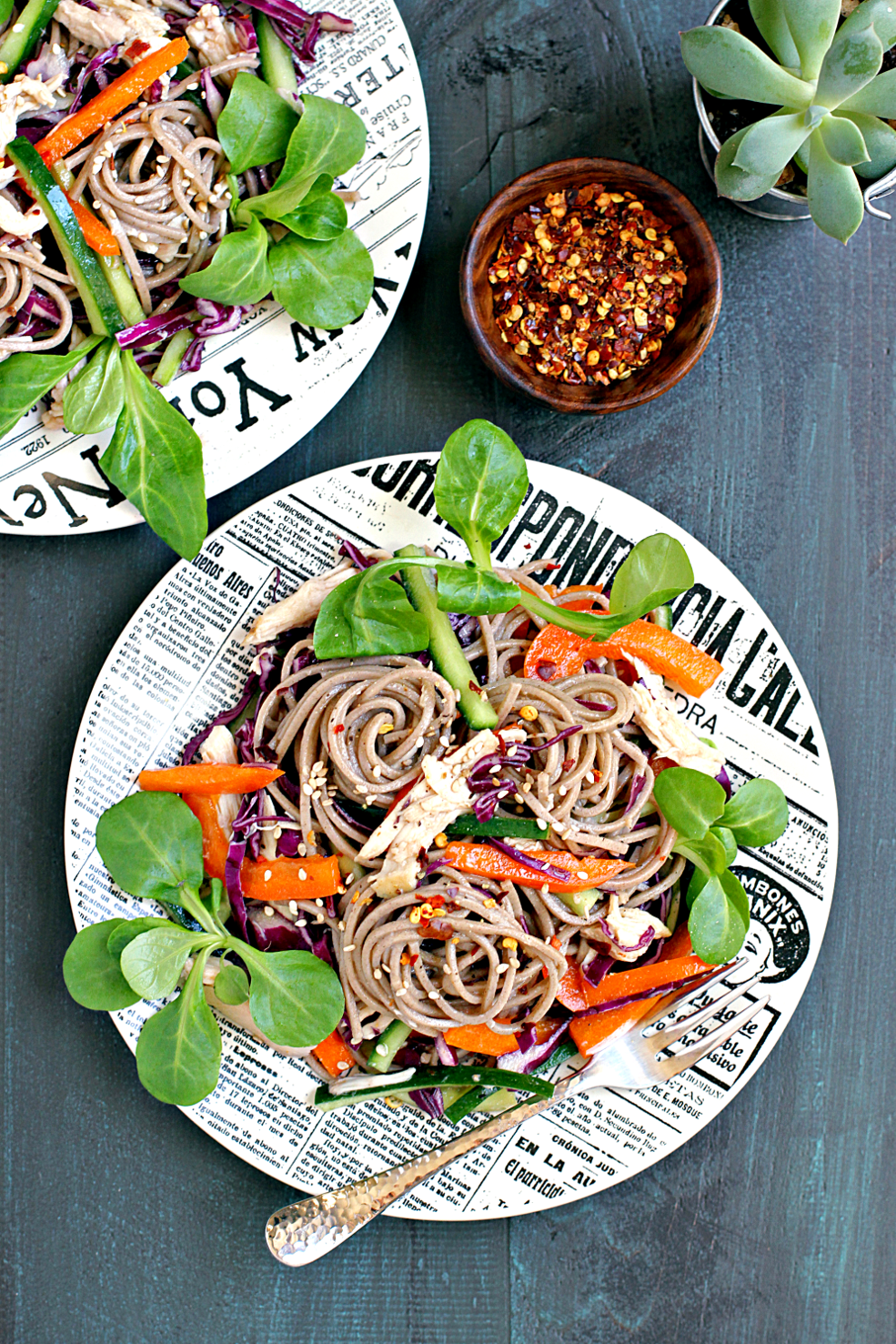 Soba Noodle Salad with Chicken and Vegetables_top