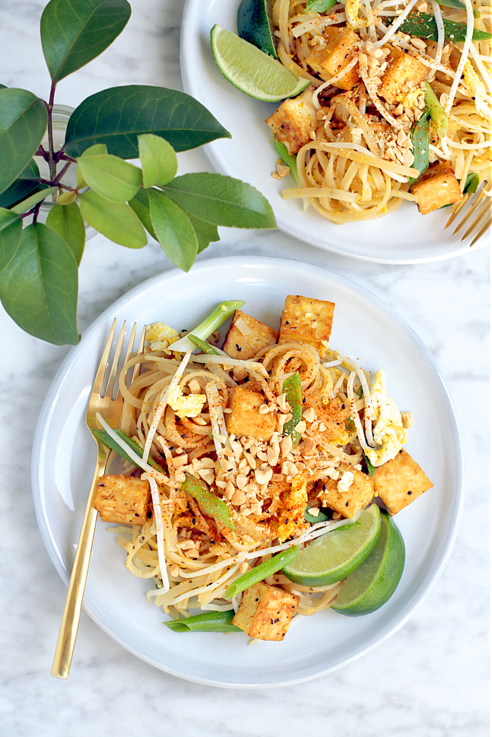 Pad Thai With Tofu Two Of A Kind